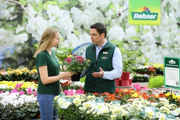 Dehner Gartencenter Gmbh Co Kg Als Ausbilder Ausbildungsplatze Infos Und Mehr Azubiyo