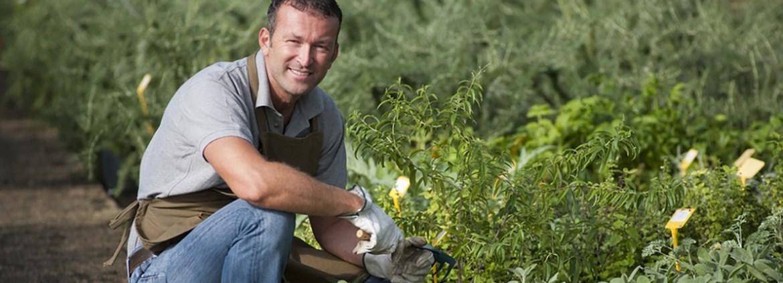 Gärtner Ausbildung: Berufsbild & freie Stellen | AZUBIYO
