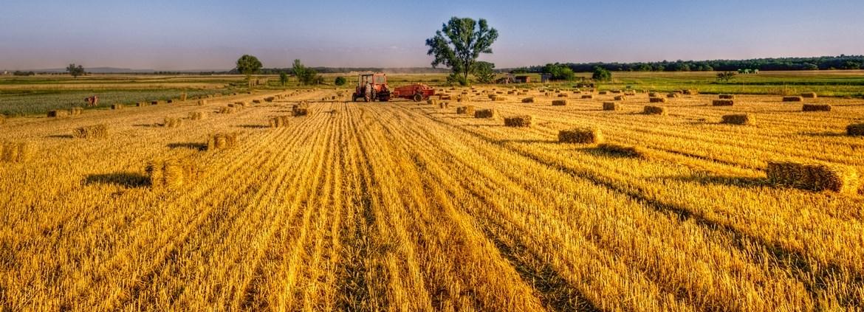 Landwirt Landwirtin Gehalt Verdienst Azubiyo